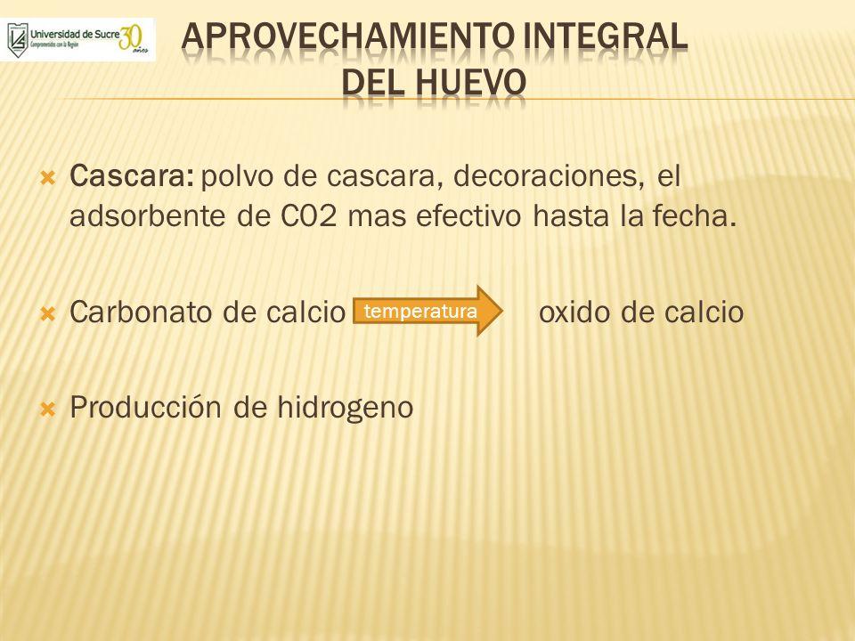Cascara: polvo de cascara, decoraciones, el adsorbente de C02 mas efectivo hasta la fecha. Carbonato de calcio oxido de calcio Producción de hidrogeno