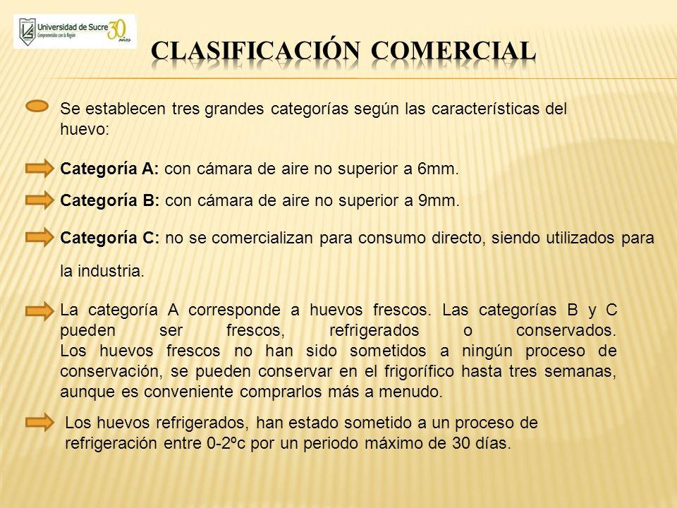 Se establecen tres grandes categorías según las características del huevo: Categoría A: con cámara de aire no superior a 6mm. Categoría B: con cámara