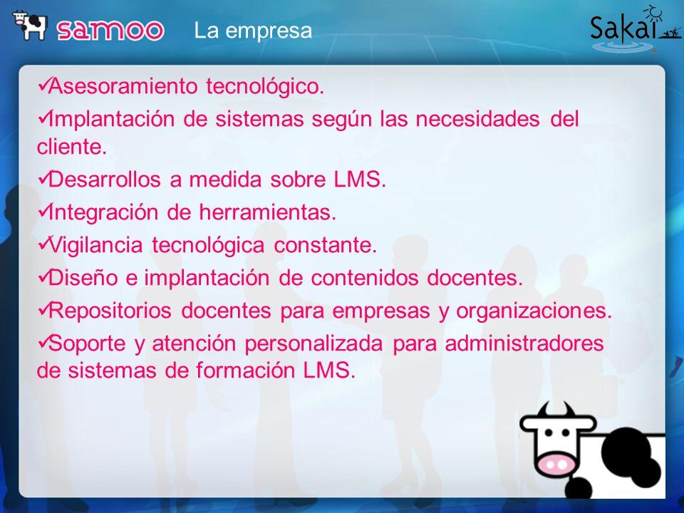 La empresa Asesoramiento tecnológico. Implantación de sistemas según las necesidades del cliente. Desarrollos a medida sobre LMS. Integración de herra