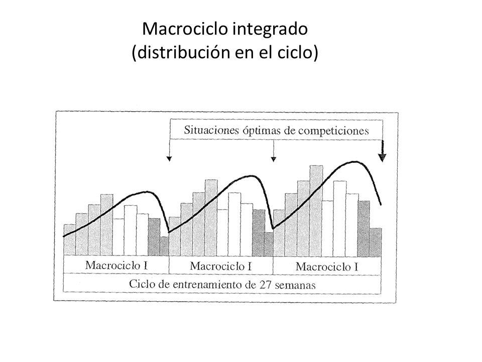 Modelos de periodización III EL DISEÑO ATR ( ISSURIN y KAVERIN 1985 ): – Características: Se renuncia al entrenamiento simultáneo de muchas cualidades y se concentra el efecto del entrenamiento y una orientación definida en un menor número de capacidades.