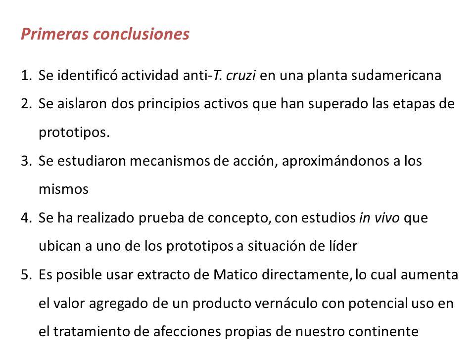 Primeras conclusiones 1.Se identificó actividad anti-T. cruzi en una planta sudamericana 2.Se aislaron dos principios activos que han superado las eta