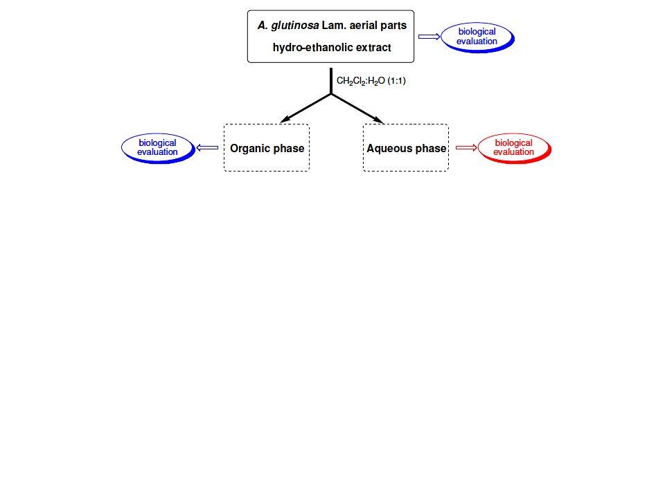 Primeras conclusiones 1.Se identificó actividad anti-T.