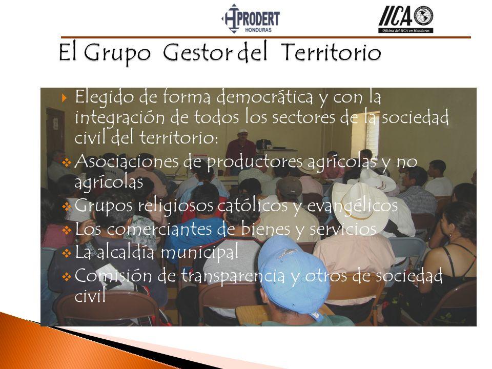 Elegido de forma democrática y con la integración de todos los sectores de la sociedad civil del territorio: Asociaciones de productores agrícolas y n