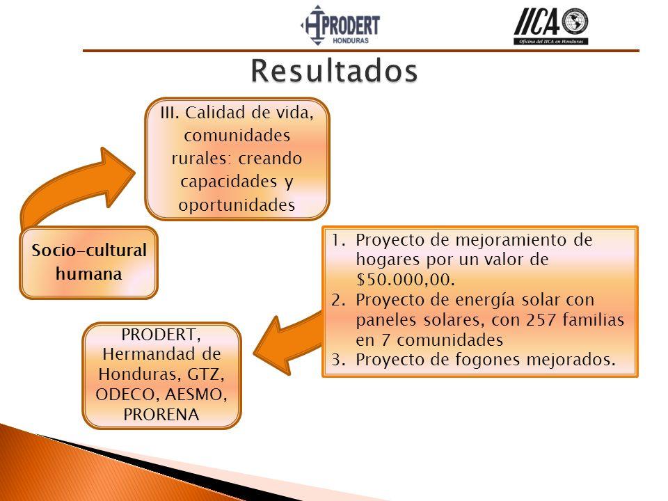 III. Calidad de vida, comunidades rurales: creando capacidades y oportunidades Socio-cultural humana PRODERT, Hermandad de Honduras, GTZ, ODECO, AESMO