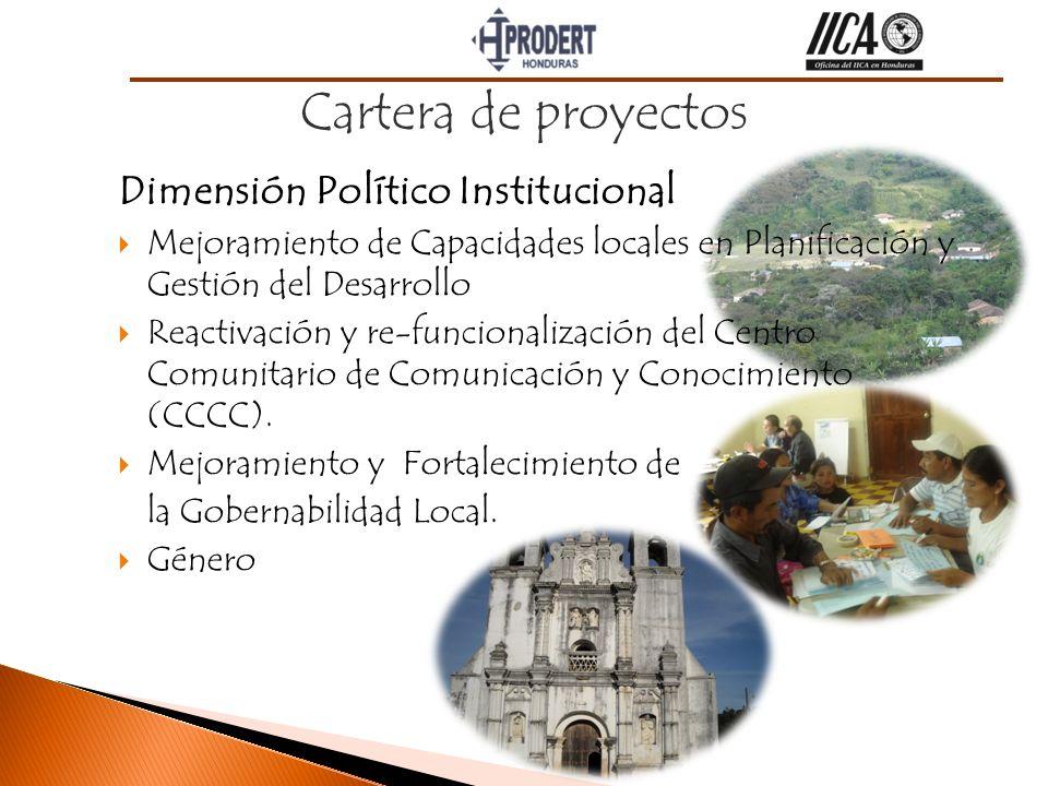 Dimensión Político Institucional Mejoramiento de Capacidades locales en Planificación y Gestión del Desarrollo Reactivación y re-funcionalización del