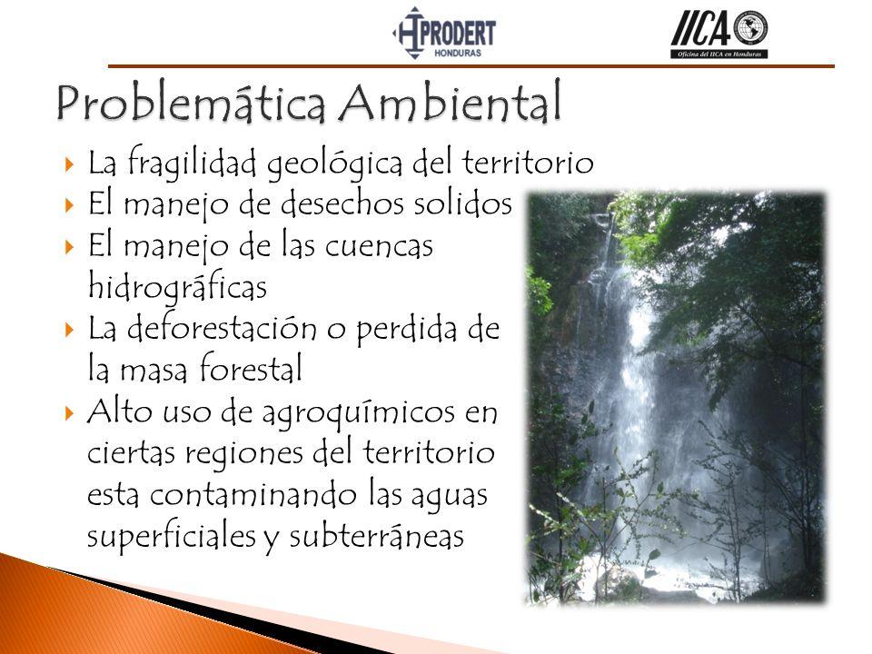 Dimensión Económica Desarrollo Turístico.