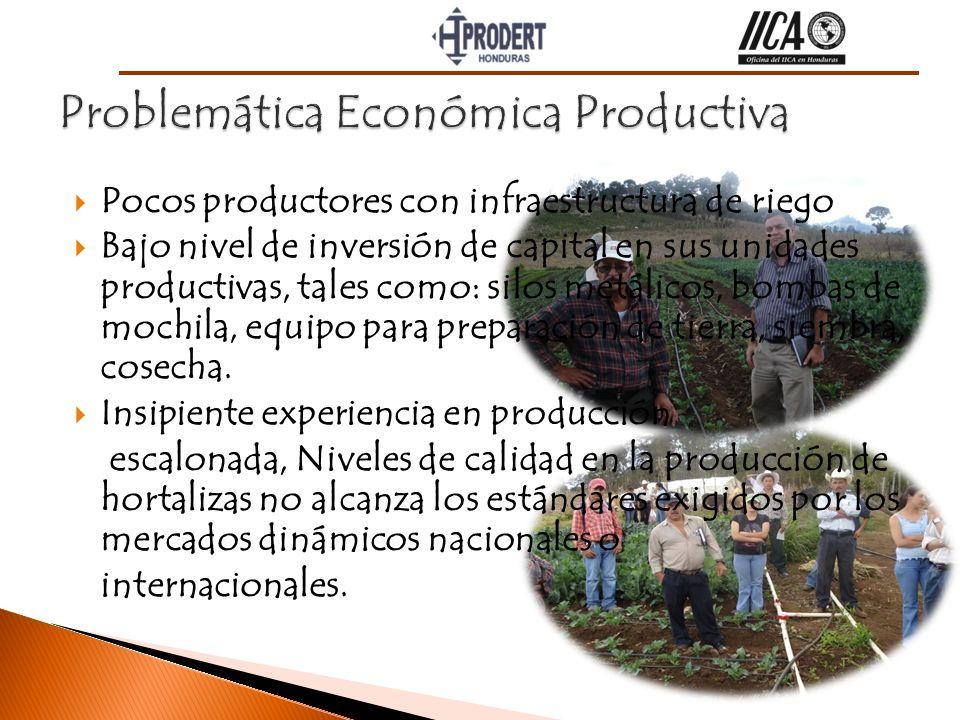 Pocos productores con infraestructura de riego Bajo nivel de inversión de capital en sus unidades productivas, tales como: silos metálicos, bombas de