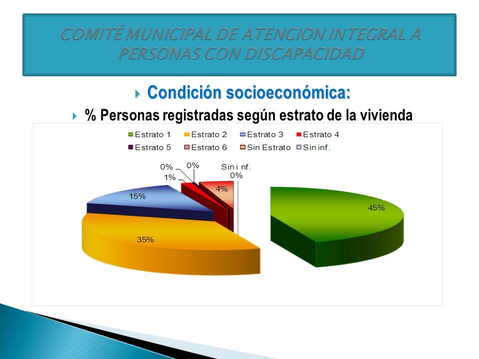 Niveles de dependencia: Niveles de dependencia: % Personas registradas que requieren ayuda permanente de otra persona El 37,7% requiere ayuda de un cuidador