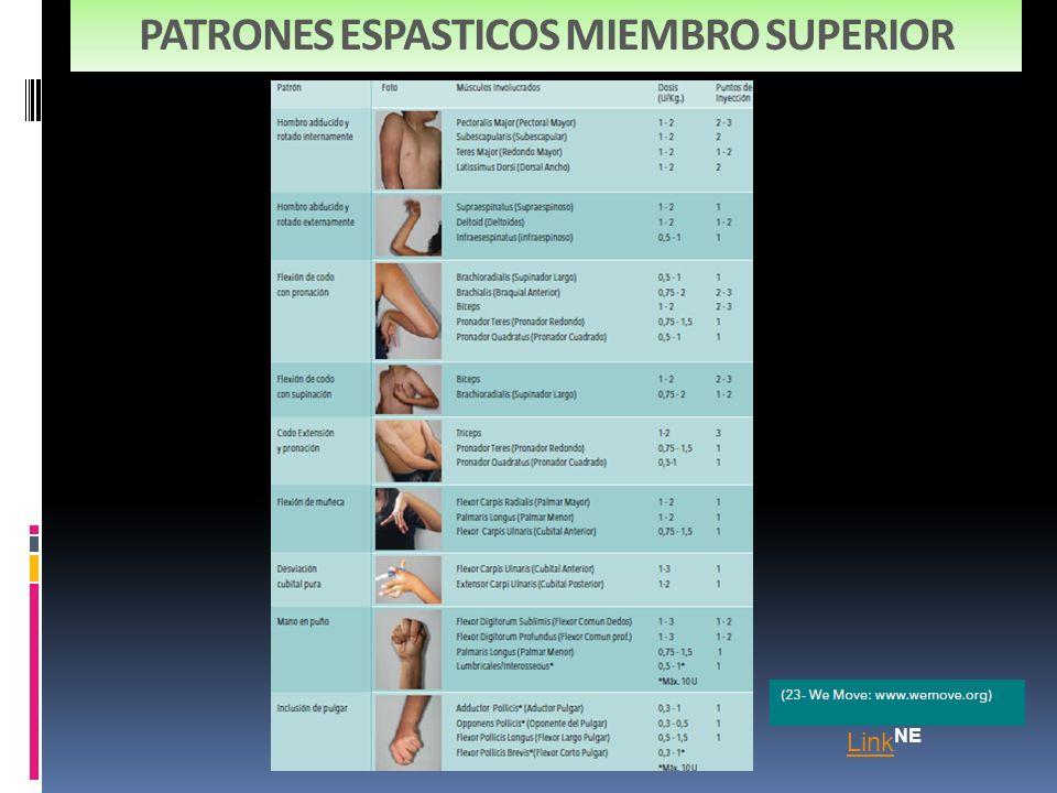 PATRONES ESPASTICOS MIEMBRO SUPERIOR Link Link NE