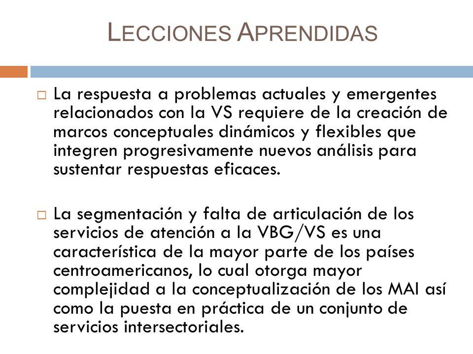 L ECCIONES A PRENDIDAS La respuesta a problemas actuales y emergentes relacionados con la VS requiere de la creación de marcos conceptuales dinámicos y flexibles que integren progresivamente nuevos análisis para sustentar respuestas eficaces.