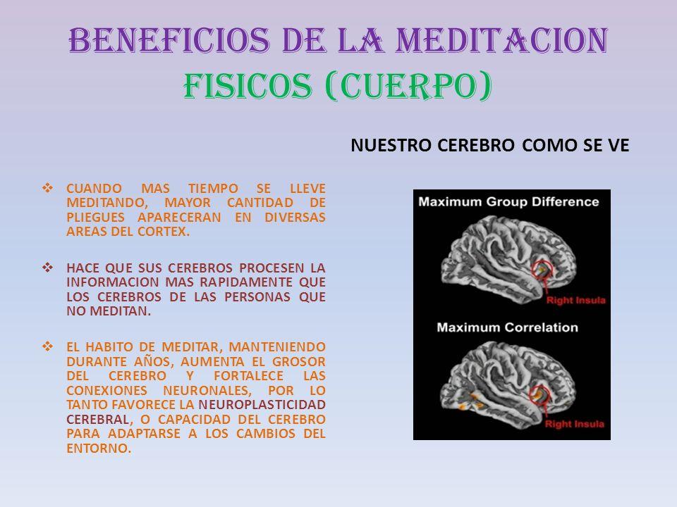 BENEFICIOS DE LA MEDITACION FISICOS (CUERPO) CUANDO MAS TIEMPO SE LLEVE MEDITANDO, MAYOR CANTIDAD DE PLIEGUES APARECERAN EN DIVERSAS AREAS DEL CORTEX.