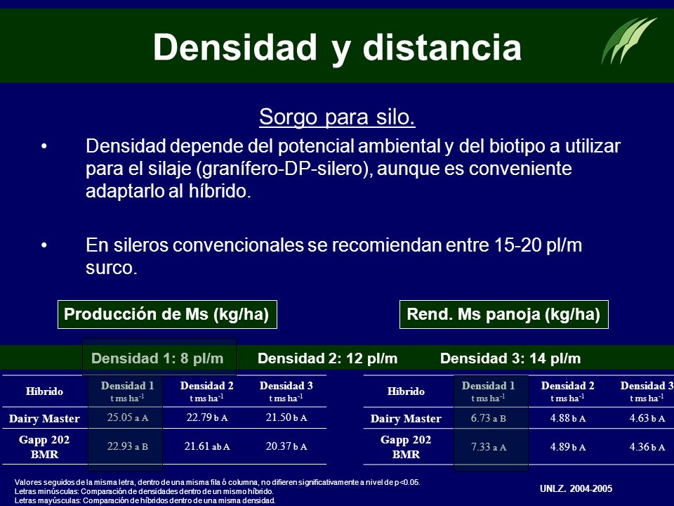Sorgo para silo. Densidad depende del potencial ambiental y del biotipo a utilizar para el silaje (granífero-DP-silero), aunque es conveniente adaptar