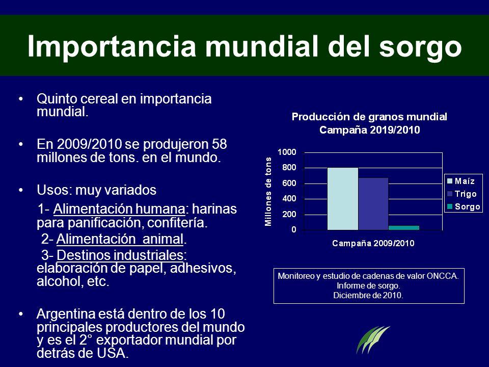 Importancia mundial del sorgo Quinto cereal en importancia mundial. En 2009/2010 se produjeron 58 millones de tons. en el mundo. Usos: muy variados 1-