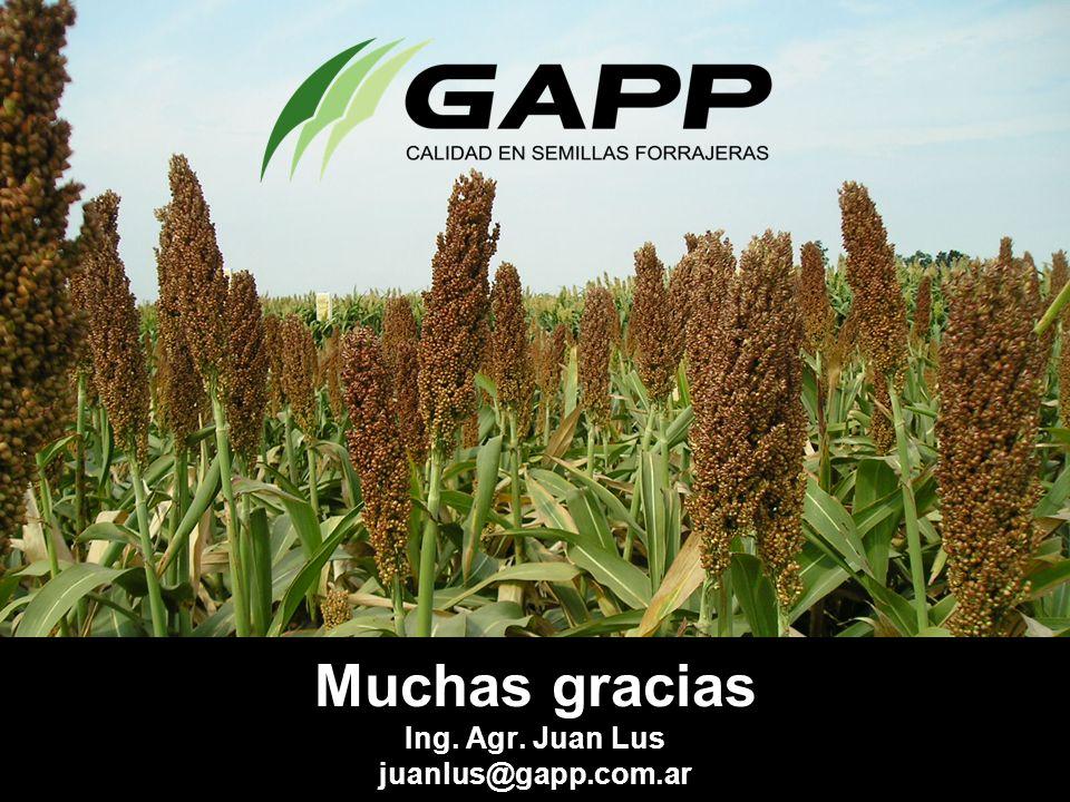 Muchas gracias Ing. Agr. Juan Lus juanlus@gapp.com.ar