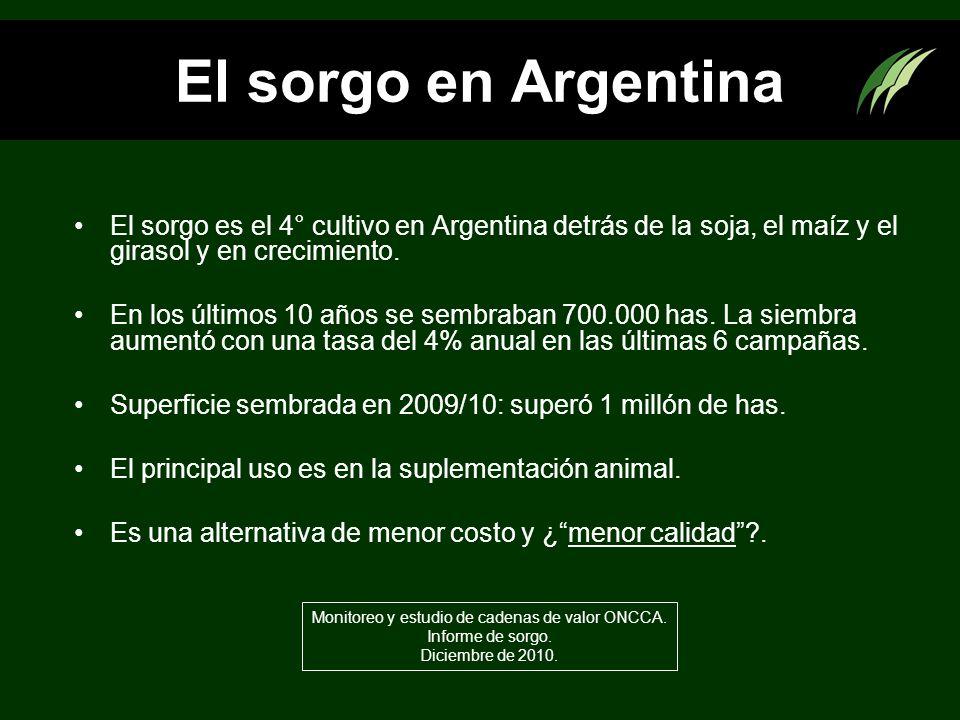 El sorgo en Argentina El sorgo es el 4° cultivo en Argentina detrás de la soja, el maíz y el girasol y en crecimiento. En los últimos 10 años se sembr