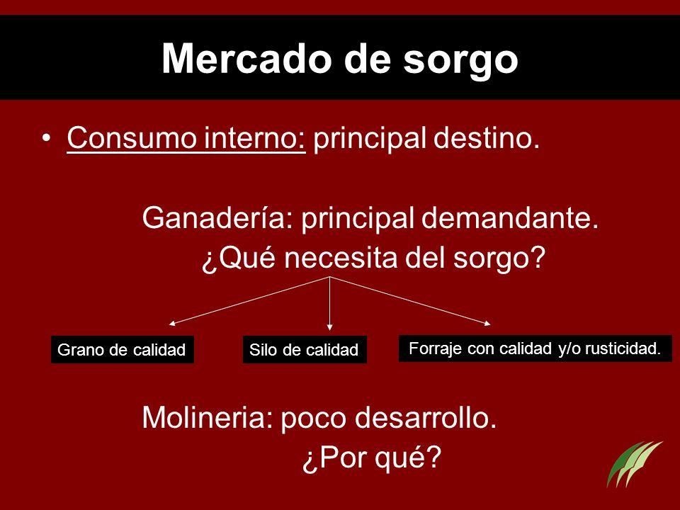 Mercado de sorgo Consumo interno: principal destino. Ganadería: principal demandante. ¿Qué necesita del sorgo? Molineria: poco desarrollo. ¿Por qué? G