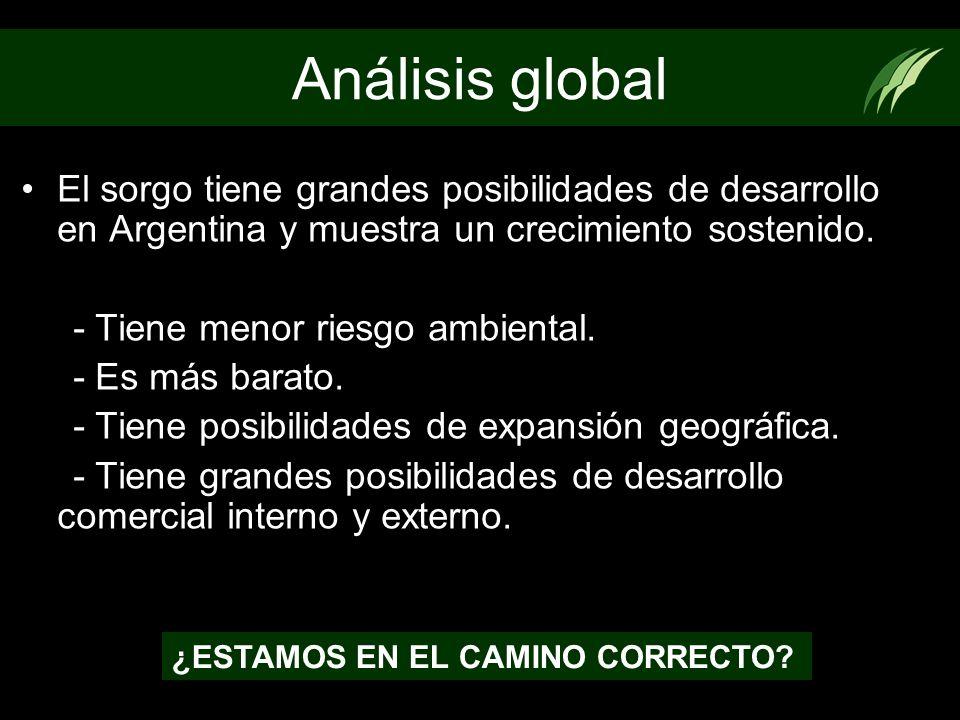 Análisis global El sorgo tiene grandes posibilidades de desarrollo en Argentina y muestra un crecimiento sostenido. - Tiene menor riesgo ambiental. -