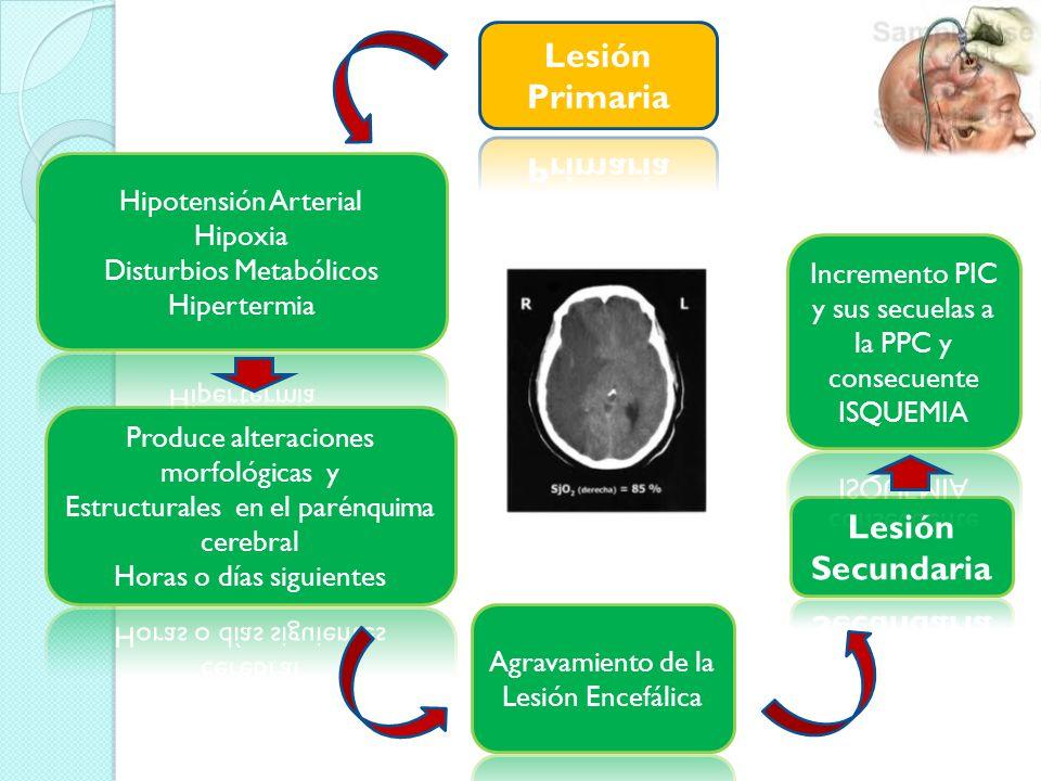 Una Disminución SjO 2 < 55% Indica que los aportes de oxígeno cerebral son insuficientes para las demandas metabólicas, ya sea por una disminución del FSC (hipoxia cerebral oligohémica) o por aumento del metabolismo cerebral: Disminución de la PPC Hipoxia Hiperventilación Falta de sedación Anemia Fiebre Convulsiones