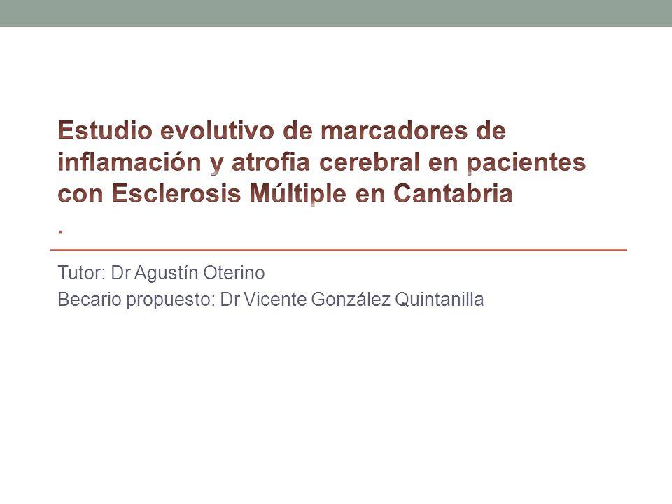 Tutor: Dr Agustín Oterino Becario propuesto: Dr Vicente González Quintanilla