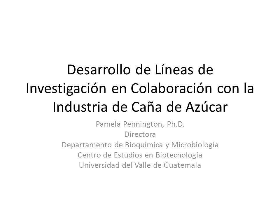Desarrollo de Líneas de Investigación en Colaboración con la Industria de Caña de Azúcar Pamela Pennington, Ph.D. Directora Departamento de Bioquímica