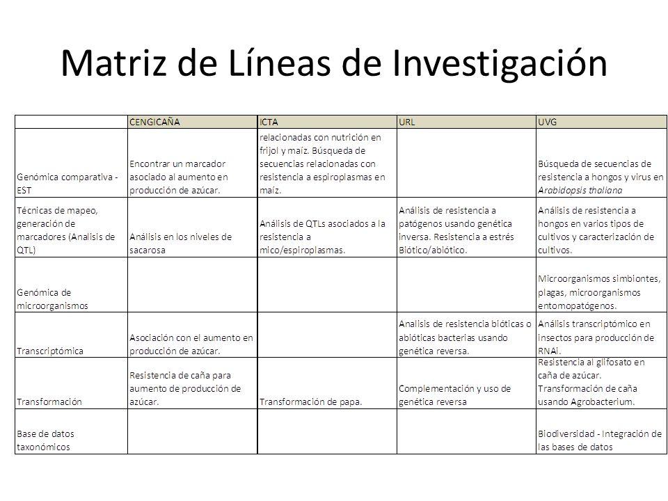 Matriz de Líneas de Investigación