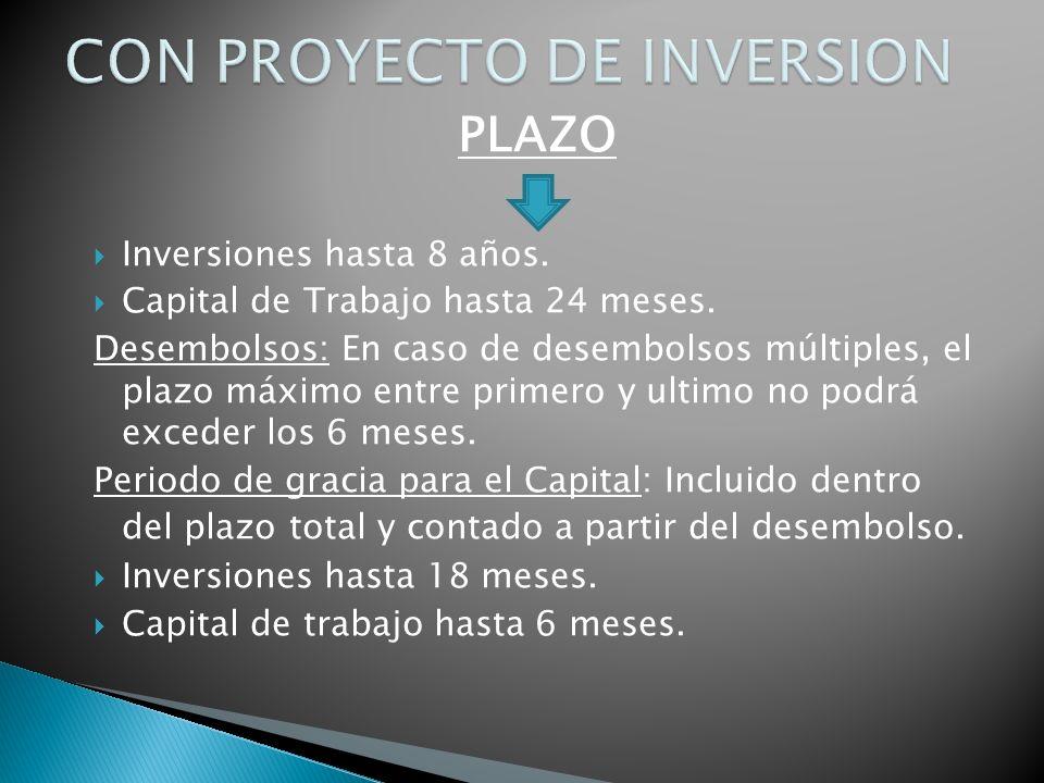 PLAZO Inversiones hasta 8 años. Capital de Trabajo hasta 24 meses.