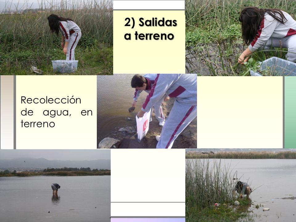 Recolección de agua, en terreno Salidas a terreno 2) Salidas a terreno