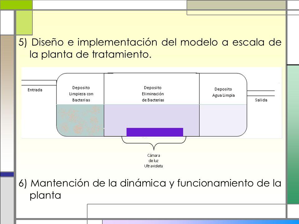 5) Diseño e implementación del modelo a escala de la planta de tratamiento. 6) Mantención de la dinámica y funcionamiento de la planta