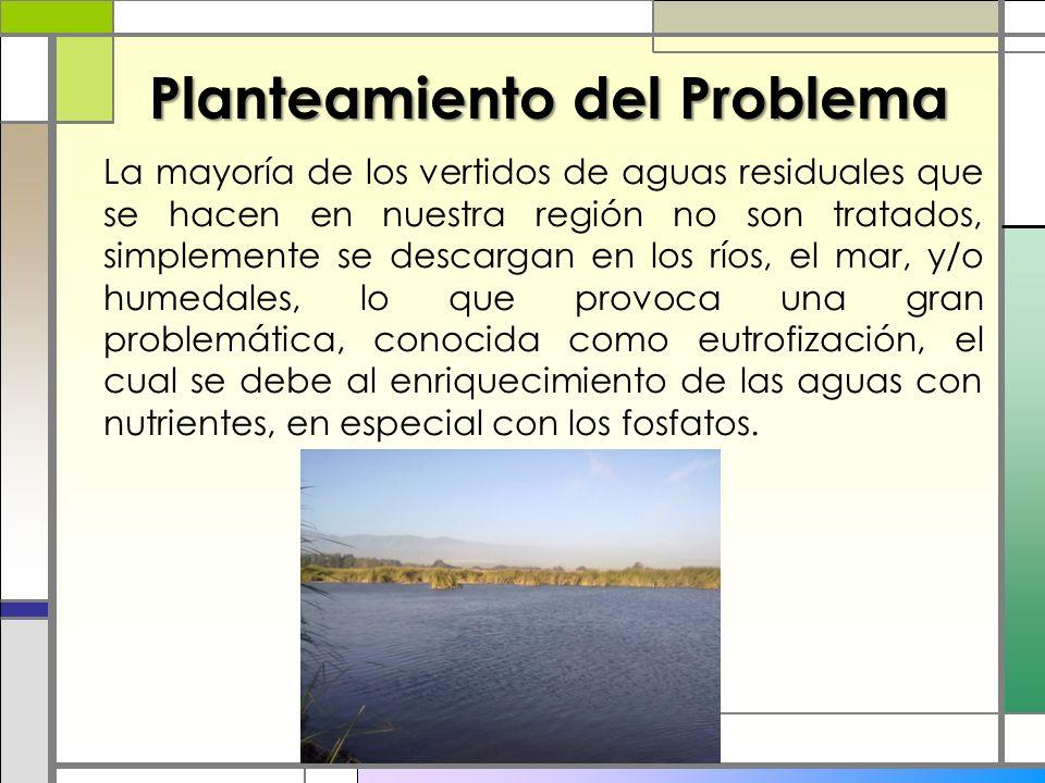 Planteamiento del Problema La mayoría de los vertidos de aguas residuales que se hacen en nuestra región no son tratados, simplemente se descargan en los ríos, el mar, y/o humedales, lo que provoca una gran problemática, conocida como eutrofización, el cual se debe al enriquecimiento de las aguas con nutrientes, en especial con los fosfatos.