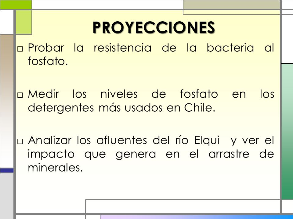 PROYECCIONES Probar la resistencia de la bacteria al fosfato. Medir los niveles de fosfato en los detergentes más usados en Chile. Analizar los afluen