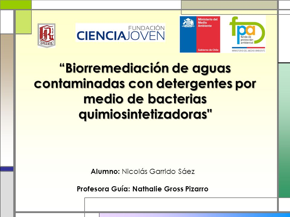 Biorremediación de aguas contaminadas con detergentes por medio de bacterias quimiosintetizadoras Alumno: Nicolás Garrido Sáez Profesora Guía: Nathalie Gross Pizarro