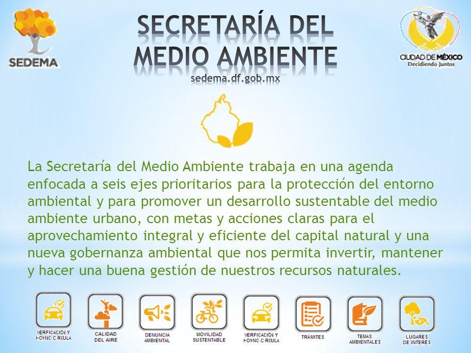 La Secretaría del Medio Ambiente trabaja en una agenda enfocada a seis ejes prioritarios para la protección del entorno ambiental y para promover un d