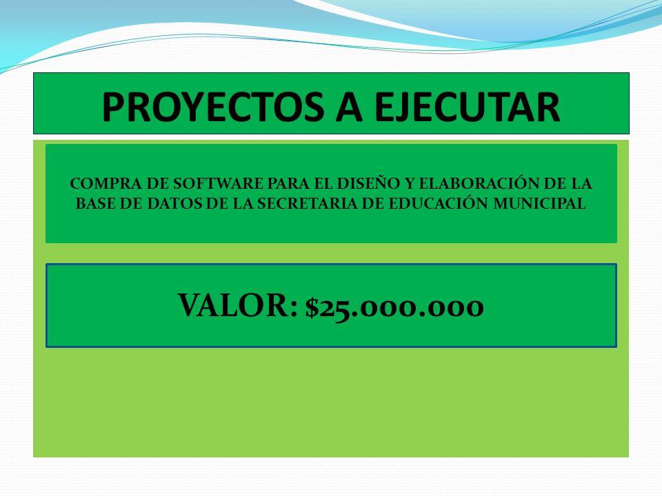 APOYO PROFESIONAL PROYECTOS Y POAIN 2011 VALOR: $5.000.000