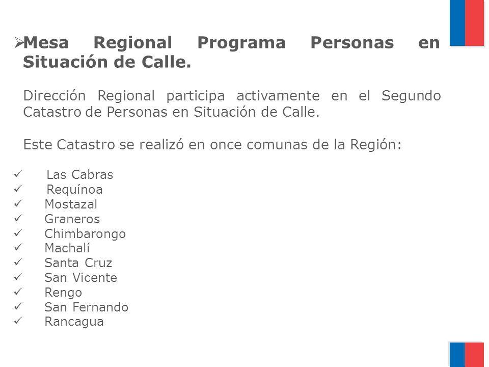Mesa Regional Programa Personas en Situación de Calle.