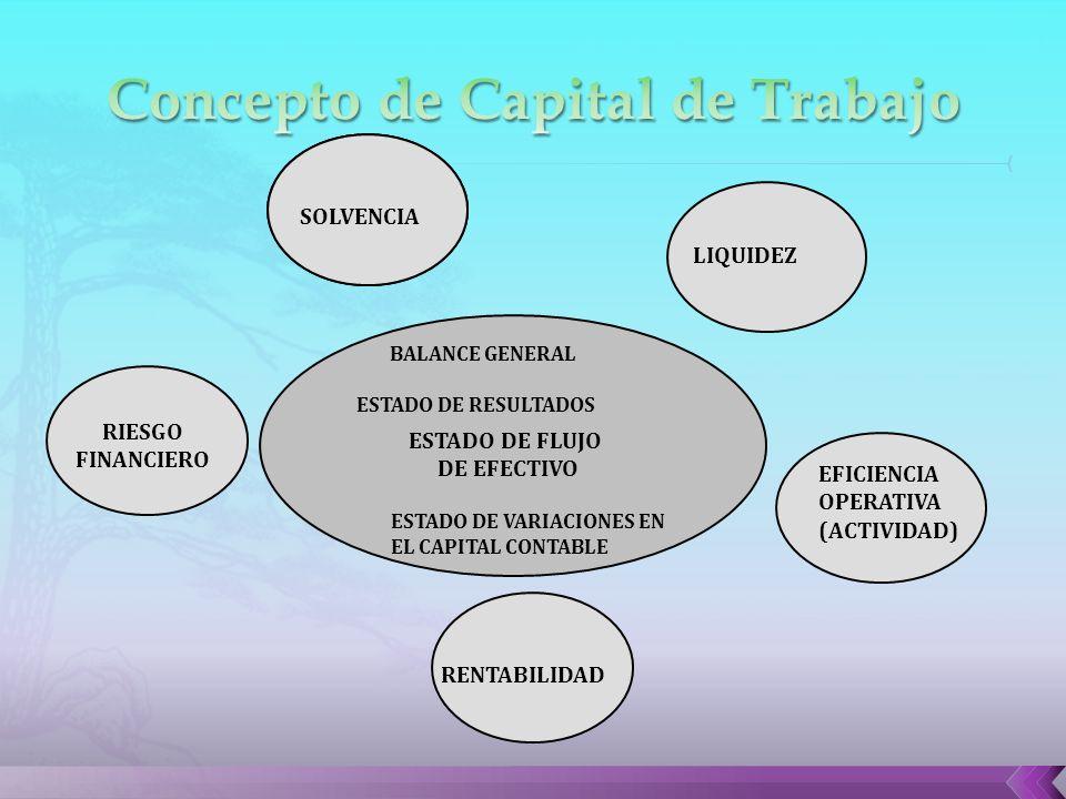 ADOPCION DE MENTALIDAD ESTRATEGICA LIQUIDEZ SISTEMA DE CREACION DE VALOR SOLVENCIA BALANCE GENERAL ESTADO DE RESULTADOS ESTADO DE FLUJO DE EFECTIVO RIESGO FINANCIERO EFICIENCIA OPERATIVA (ACTIVIDAD) ESTADO DE VARIACIONES EN EL CAPITAL CONTABLE RENTABILIDAD