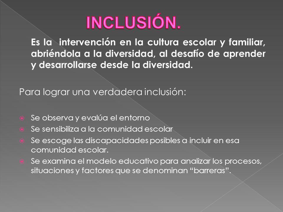 Es la intervención en la cultura escolar y familiar, abriéndola a la diversidad, al desafío de aprender y desarrollarse desde la diversidad.