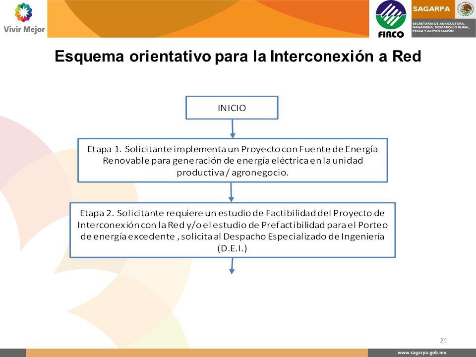 Esquema orientativo para la Interconexión a Red 21