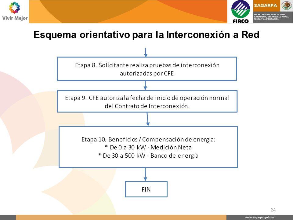 24 Esquema orientativo para la Interconexión a Red