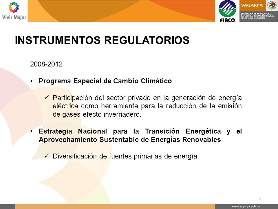 INSTRUMENTOS REGULATORIOS 2008-2012 Programa Especial de Cambio Climático Participación del sector privado en la generación de energía eléctrica como