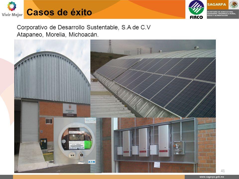 Casos de éxito 41 Corporativo de Desarrollo Sustentable, S.A de C.V Atapaneo, Morelia, Michoacán.