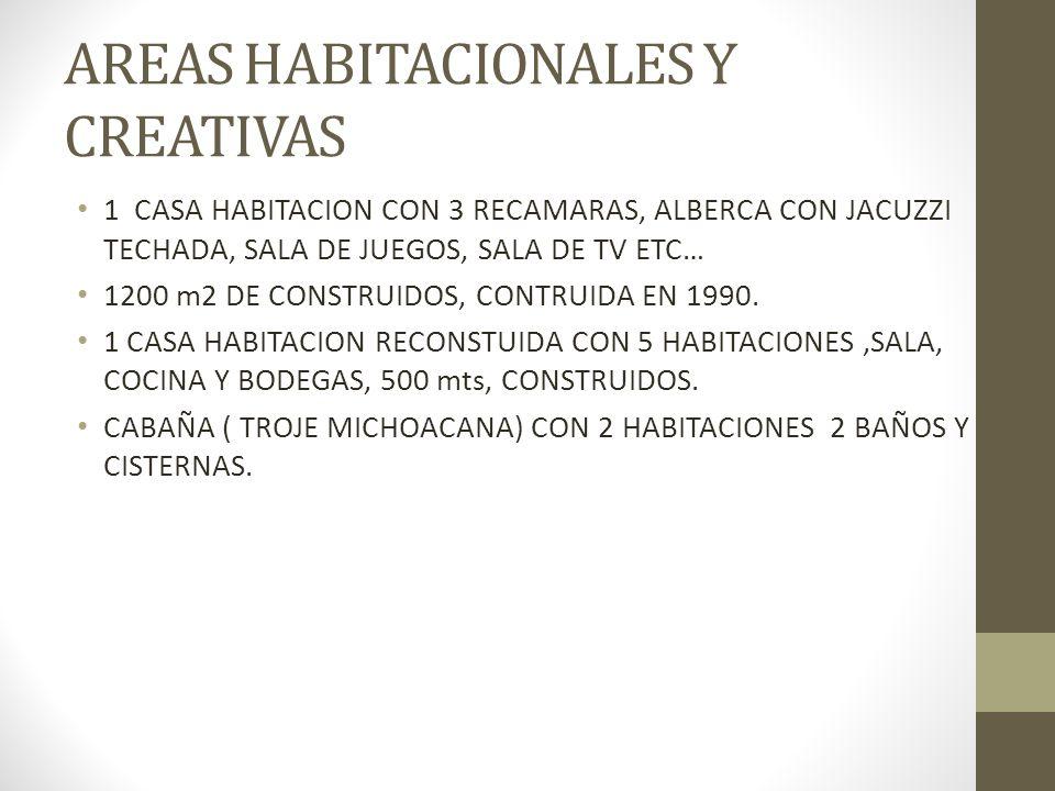 AREAS HABITACIONALES Y CREATIVAS 1 CASA HABITACION CON 3 RECAMARAS, ALBERCA CON JACUZZI TECHADA, SALA DE JUEGOS, SALA DE TV ETC… 1200 m2 DE CONSTRUIDO
