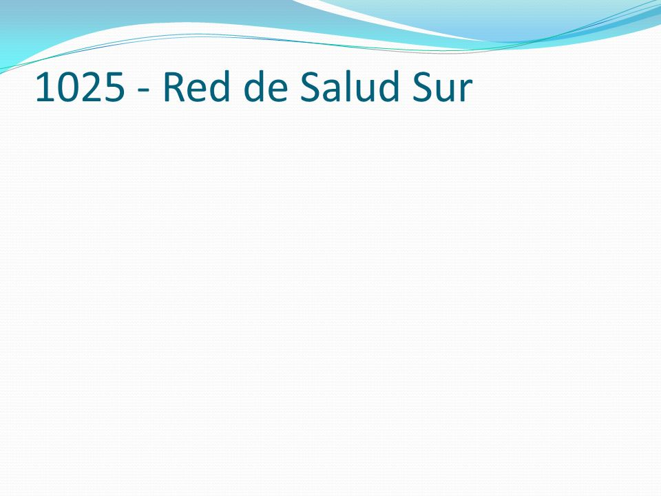 1025 - Red de Salud Sur