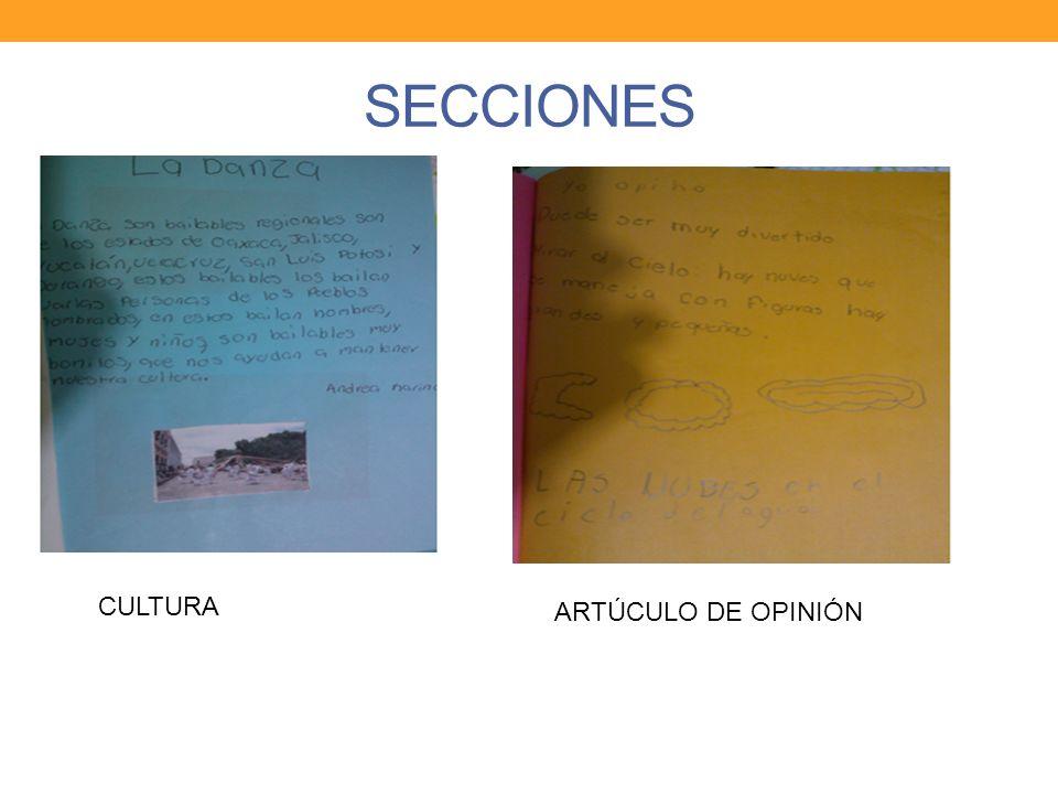 SECCIONES ARTÚCULO DE OPINIÓN CULTURA