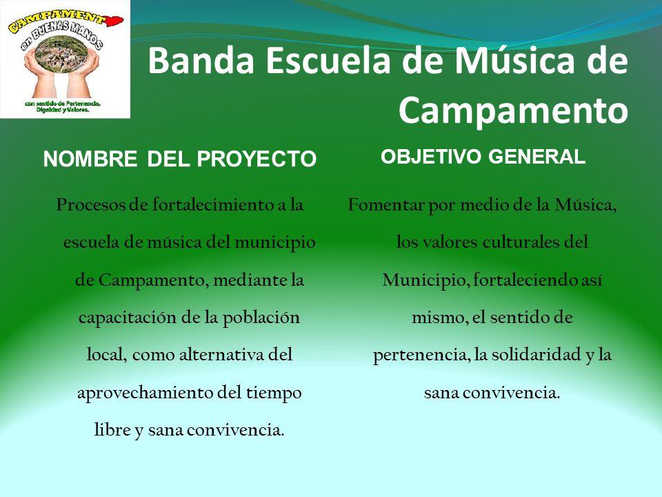 Semillero de Iniciación Musical El Semilleros de iniciación Musical cuenta con 30 alumnos en edades de entre lo 8 y los 11 años.