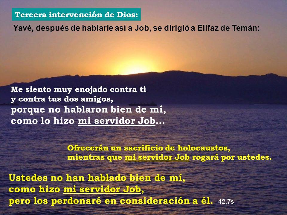 Yavé, después de hablarle así a Job, se dirigió a Elifaz de Temán: Tercera intervención de Dios: Me siento muy enojado contra ti y contra tus dos amig