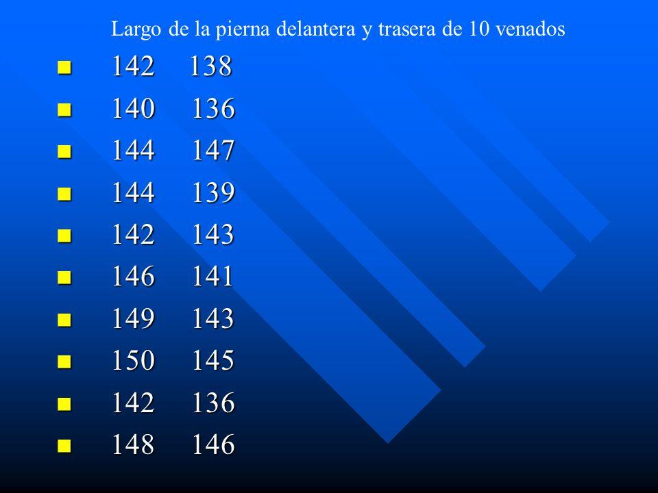 142138 142138 140 136 140 136 144 147 144 147 144 139 144 139 142 143 142 143 146 141 146 141 149 143 149 143 150 145 150 145 142 136 142 136 148 146
