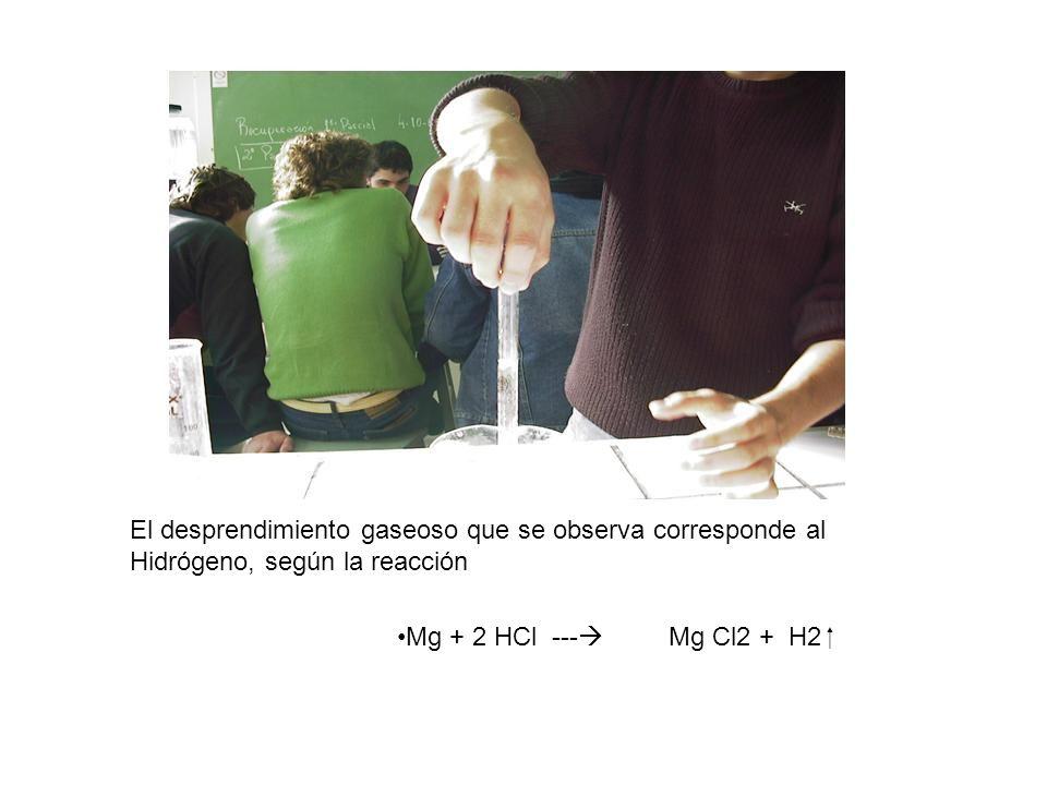 El desprendimiento gaseoso que se observa corresponde al Hidrógeno, según la reacción Mg + 2 HCl --- Mg Cl2 + H2
