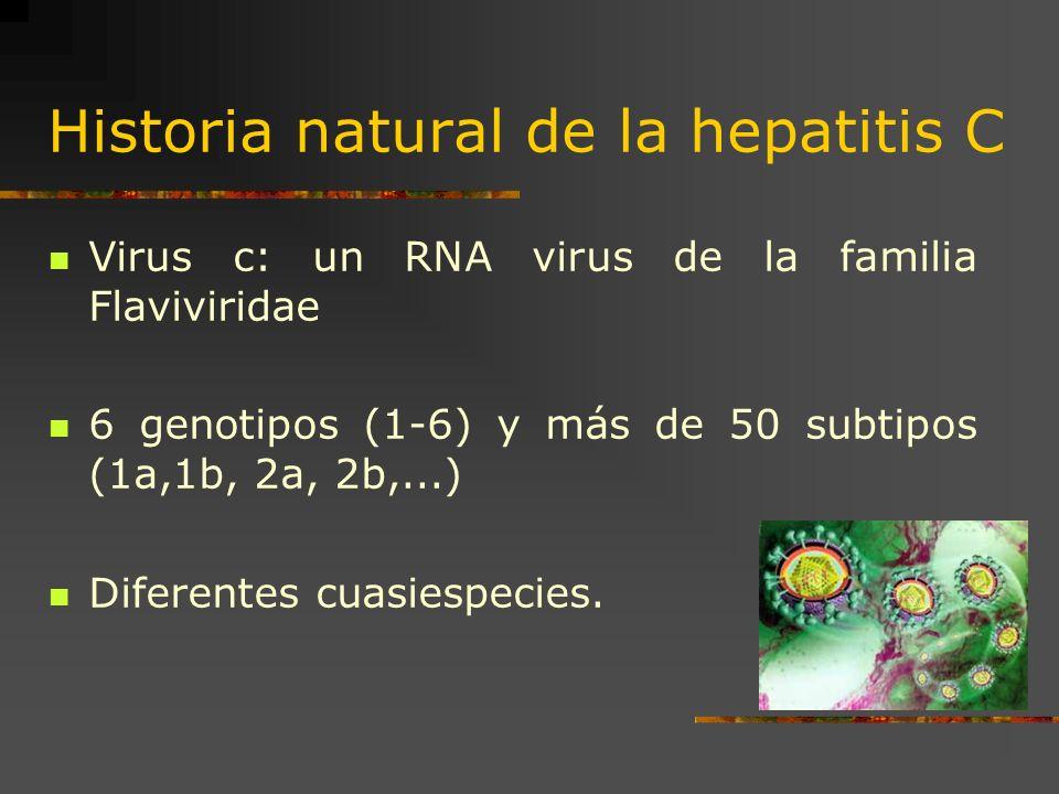 Historia natural de la hepatitis C Virus c: un RNA virus de la familia Flaviviridae 6 genotipos (1-6) y más de 50 subtipos (1a,1b, 2a, 2b,...) Diferen