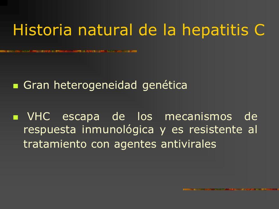 Historia natural de la hepatitis C Gran heterogeneidad genética VHC escapa de los mecanismos de respuesta inmunológica y es resistente al tratamiento
