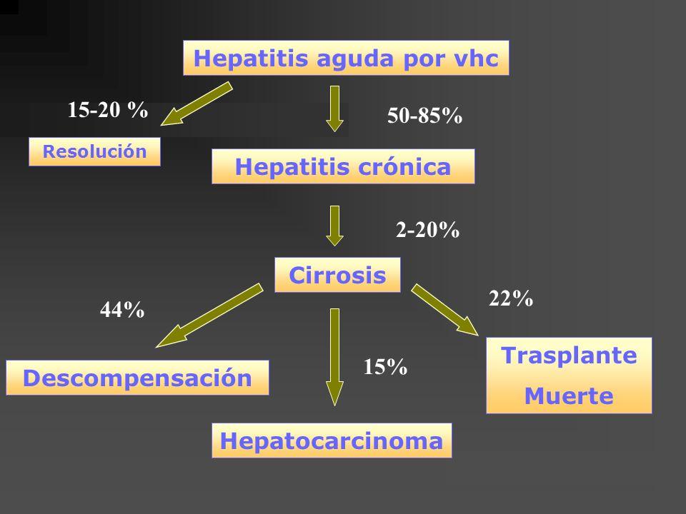 Hepatitis aguda por vhc Hepatitis crónica Cirrosis Descompensación Trasplante Muerte 15-20 % Resolución 50-85% 2-20% Hepatocarcinoma 44% 15% 22%
